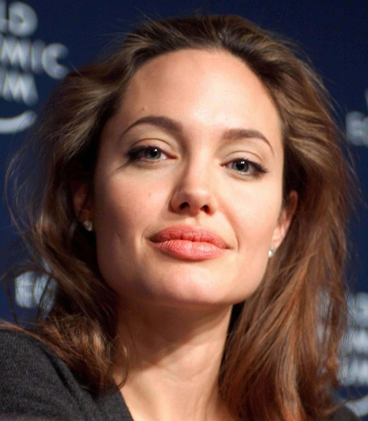Angelina Jolie courtesy Remy Steinegger (CC SA 3.0