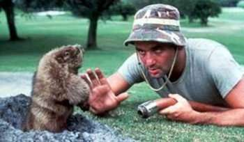 bill-murray-caddyshack