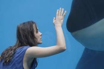 Rust and Bone (Credit: Roger Arpajou/Sony Pictures Classics)